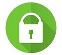 100% ssl security